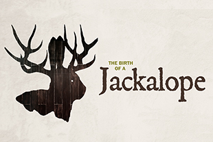Thumbnail of The Birth of a Jackalope